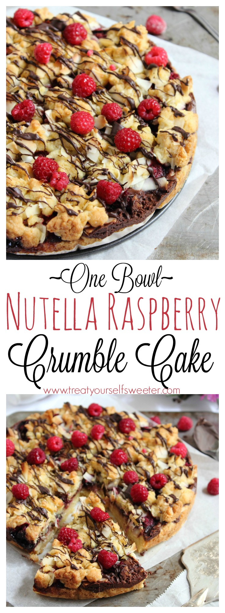 Nutella Raspberry Crumble Cake, All Made in One Bowl!