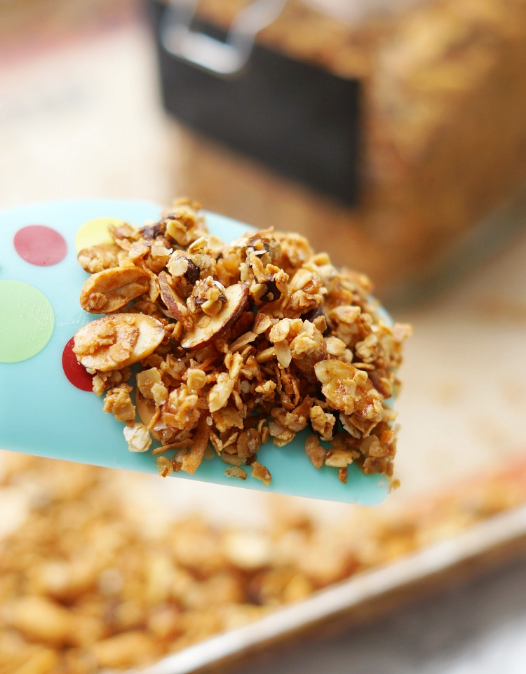 Simple Sweet and Salty Homemade Granola